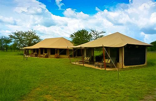 tented camp safari tanzanie