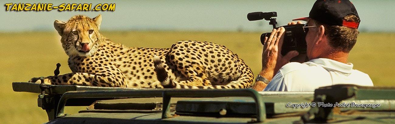 Tanzanie safari prix d'un safari photo en Tanzanie