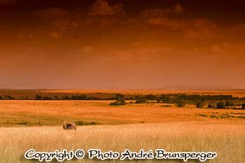 climat, saison et mousson en tanzanie
